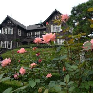 旧古河庭園の秋バラ