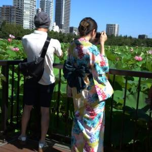 上野不忍池・蓮の花・・5