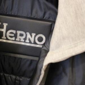 HERNO 2-Way Down Jacket