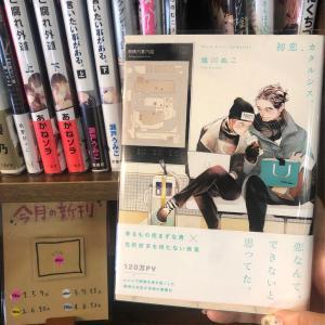 5月の新入荷♪①【初恋、カタルシス。、 フォークロアのごちそう①...他】
