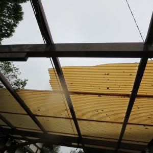 台風15号の傷痕