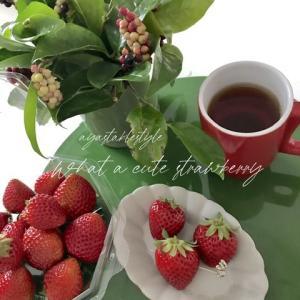 沖縄産の苺が美味しくて!