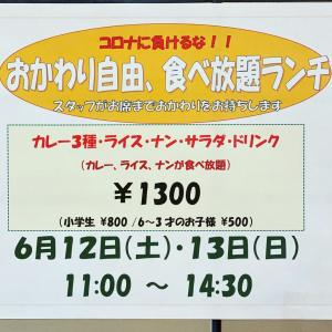 13日食べ放題ランチのカレーメニューです!!