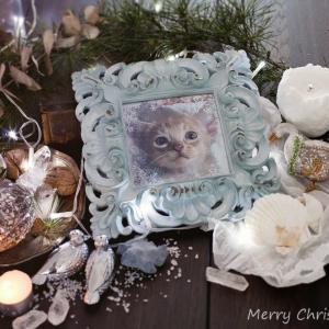 Merry Christmas💖
