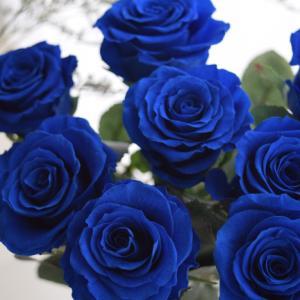 ~夢かなう~ブルーローズに花ことばをのせて。