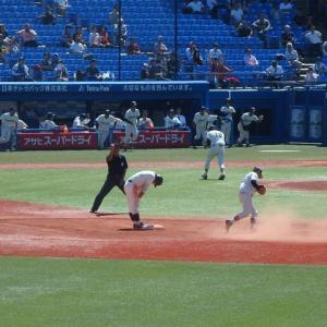 早稲田 vs 法政 @神宮【東京六大学】