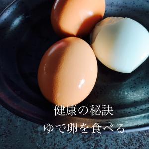 君島十和子さんが朝食べている○○○