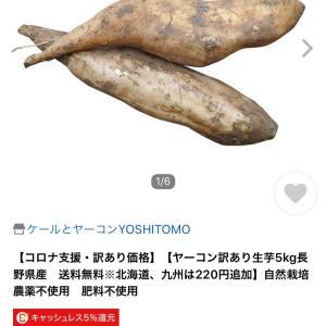 """""""在宅61日目_3 初めてのヤーコン!"""""""