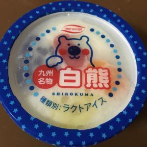 かき氷の美味しい季節になりました!九州名物白熊
