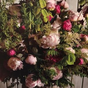 季節の花芍薬