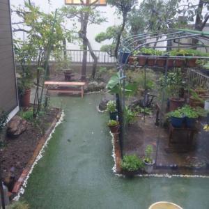 ☆★台風19号接近、私の住む埼玉県にも、大雨特別警報がだされました。被害のないことを祈っています。★☆