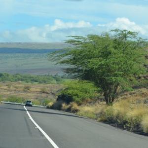 ☆★ハワイ島ドライブ、滞在2日目はワイメア、ホノカワ方面へドライブ、ポロル渓谷ルックアウトへ★☆