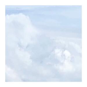 ♪   見え方 ʕ•ᴥ•ʔ