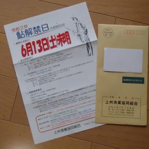 上州漁協のアユ釣り解禁情報! そして南甘漁協の解禁情報!