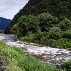毎年恒例の魚野川・鮎追い会・・・