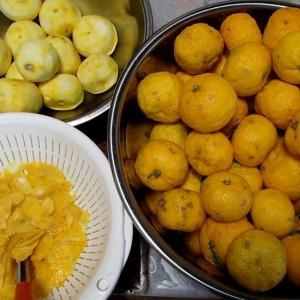 柚子胡椒作り・・・