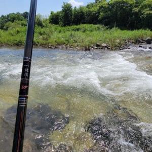鮎釣り情報:半月ぶりに碓氷川で鮎釣り・・・