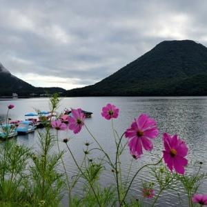 ワカサギ釣り情報:榛名湖のボート・ワカサギ・・・