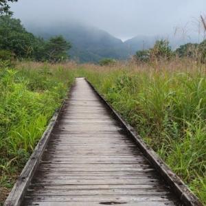 榛名山・ゆうすげの道でお写ん歩②