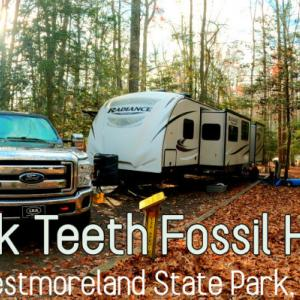 200万年前のサメの歯の化石を探しにキャンピングトレーラでキャンプ|モルモット4匹、犬2匹を連れて家族5人で感謝祭にキャンプに行って来ました