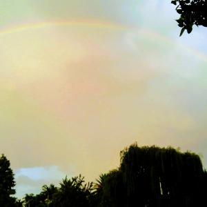 2重の虹を撮影しました