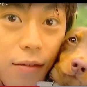 ウチの犬が世界でいちばん可愛い