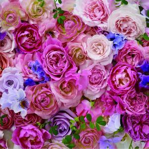 癒しの香り、幸せな気持ちになる花は○○○?