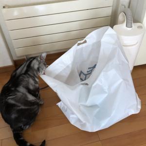 そこに袋があるからさ。