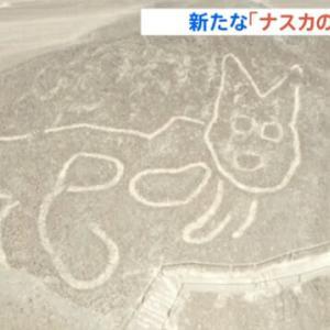 ニャスカの巨大猫。