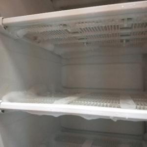 冷凍庫の霜取りに丁度よい陽気☀