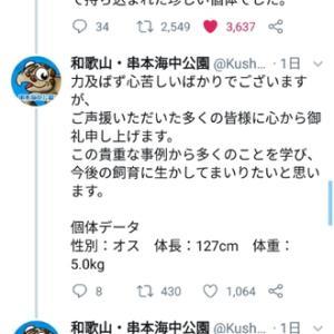 和歌山・串本海中公園のラブカに会いたかった〜