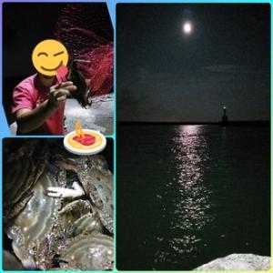 久しぶりに夜の港へ