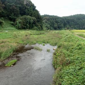 栃木県矢板市 川崎城跡公園と城の湯温泉センター