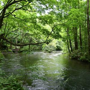 2020年お盆休みは東北方面へ・その4 奥入瀬渓流~水沢温泉~道の駅猪苗代