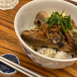 ヒノコのイワシ飯。