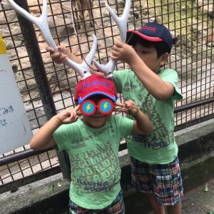 ゾウもキリンもいない動物園