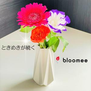 【おすすめ】お花の定期便「bloomeeブルーミー」体験♪お花の癒やし空間で笑顔があふれる生活♪