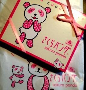 さくらパンダ 2012