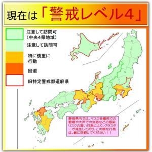 新型コロナウイルス感染症の静岡県伊東市内の状況