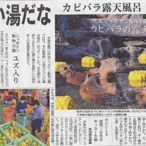 「元祖カピバラの露天風呂」が11月21日からスタート