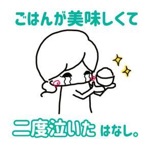【manaki】ご飯が美味しくて2度泣いた話をしよう。