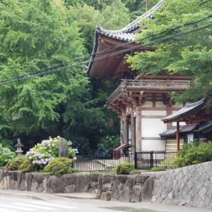 久安寺へ紫陽花を見に@池田~大阪散歩②