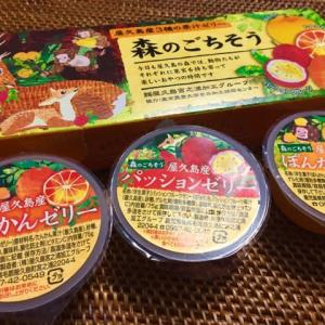 森のごちそう 屋久島産3種の果汁ゼリー / ぷかり堂 <鹿児島県>