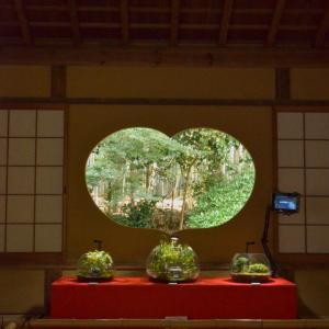 嵐山寺院めぐり。