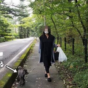 白糸の滝【軽井沢旅行5】