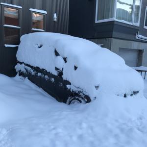 冬の大暴風雪☃️