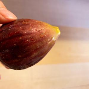 季節の野菜、フルーツは身体に必要なもの。