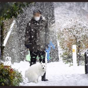 アキちゃんの雪遊び 2020