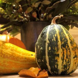 かぼちゃ飾り