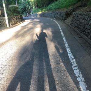 夏の散歩の記録